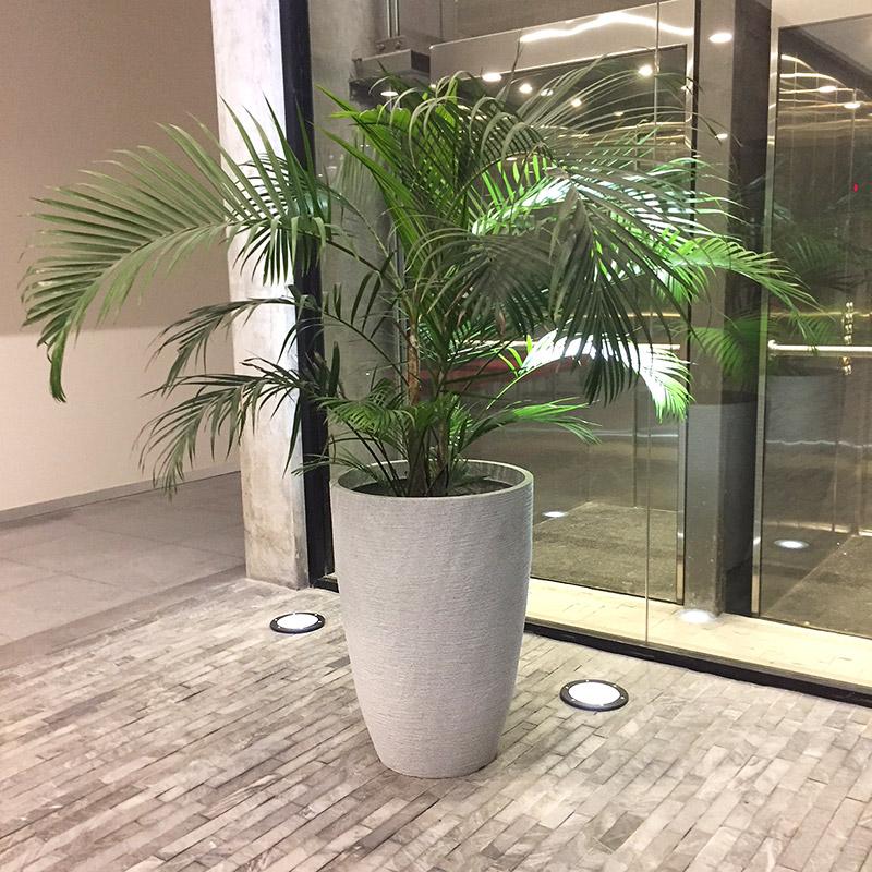 Maceta c nica modernit grande alta gracia deco for Macetas de plantas para interiores